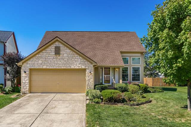 3337 Cargin Court, Canal Winchester, OH 43110 (MLS #220033057) :: Signature Real Estate
