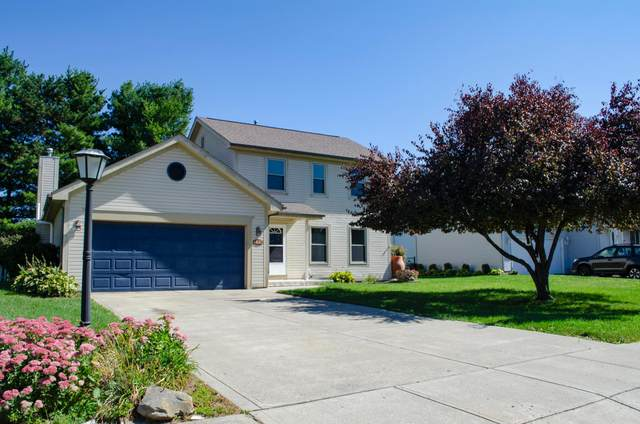300 Stone Hedge Row Drive, Johnstown, OH 43031 (MLS #220033064) :: 3 Degrees Realty