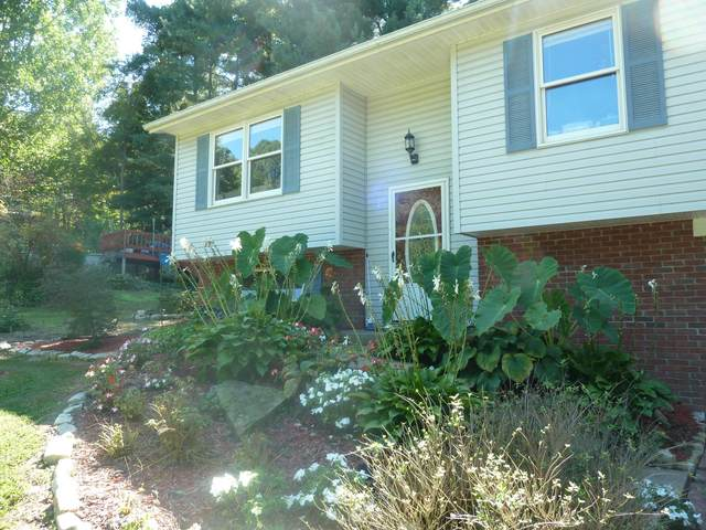 2955 Deer Path, Duncan Falls, OH 43734 (MLS #220033089) :: The Holden Agency