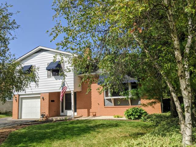 6966 Carrousel Drive S, Reynoldsburg, OH 43068 (MLS #220033347) :: The Holden Agency