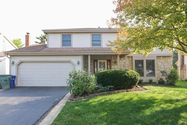 5484 Gardenbrooke Street, Columbus, OH 43235 (MLS #220033486) :: ERA Real Solutions Realty