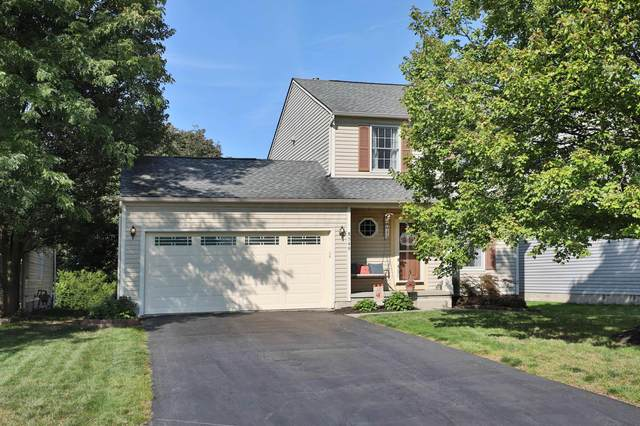8549 Olenbrook Drive, Lewis Center, OH 43035 (MLS #220033560) :: Signature Real Estate