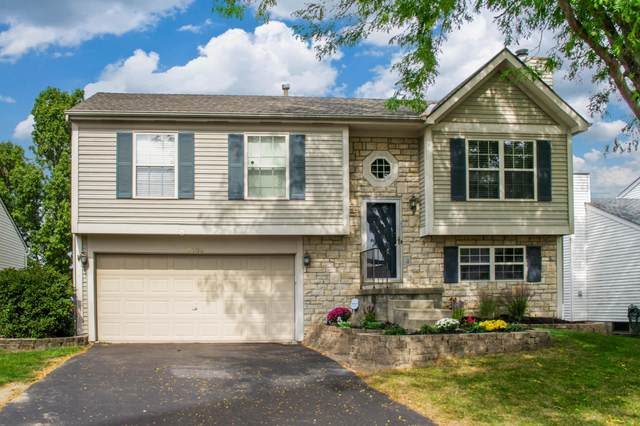 5704 Silver Spurs Lane, Galloway, OH 43119 (MLS #220033563) :: The Holden Agency