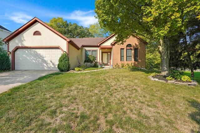 5475 Dexter Falls Road, Columbus, OH 43221 (MLS #220033592) :: Signature Real Estate