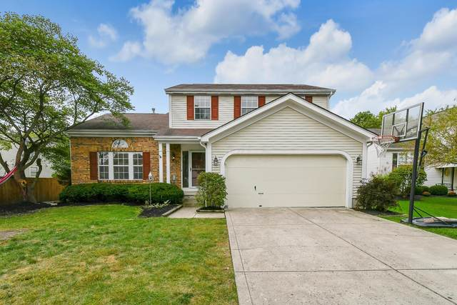 4811 Twig Court, Columbus, OH 43230 (MLS #220033898) :: The Holden Agency