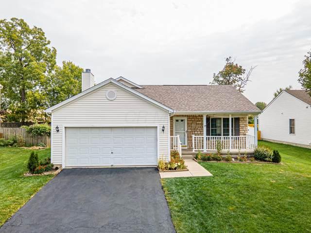 1290 Reserve Drive, Reynoldsburg, OH 43068 (MLS #220033928) :: Sam Miller Team