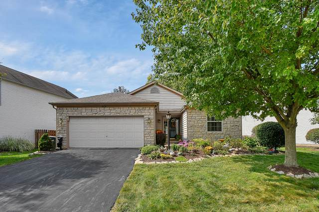 8419 Old Ivory Way, Blacklick, OH 43004 (MLS #220033998) :: Sam Miller Team