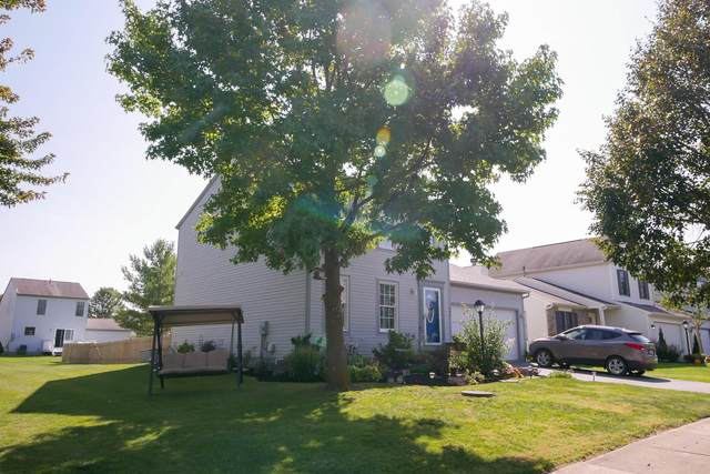 236 Overtrick Drive, Delaware, OH 43015 (MLS #220034228) :: Signature Real Estate
