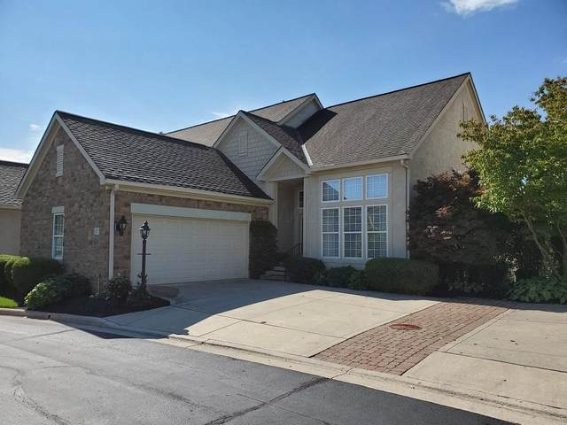 1037 Bluff Vista Drive, Columbus, OH 43235 (MLS #220034262) :: RE/MAX Metro Plus