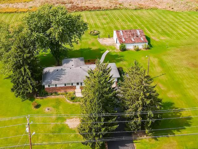 6401 Kitzmiller Road, New Albany, OH 43054 (MLS #220034265) :: RE/MAX ONE