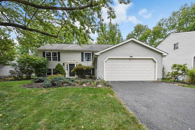 2515 Sawmill Forest Avenue, Dublin, OH 43016 (MLS #220034312) :: Dublin Realty Group