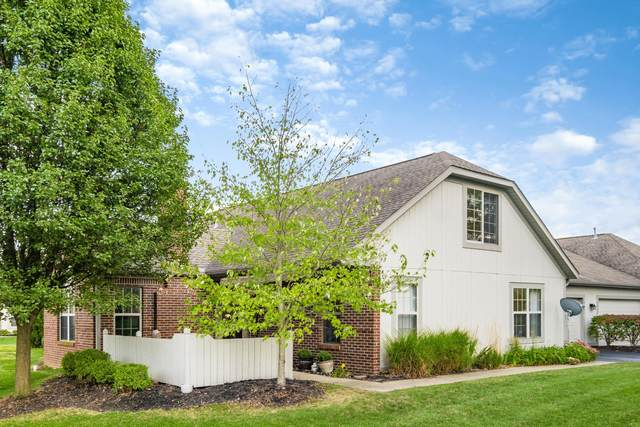 3941 Orchard View Place, Powell, OH 43065 (MLS #220034482) :: MORE Ohio