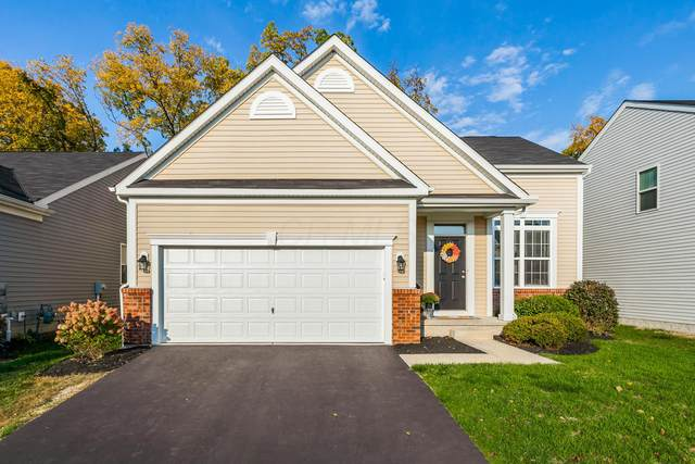 343 Cloverhill Drive, Galloway, OH 43119 (MLS #220034525) :: The Willcut Group