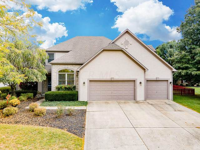7027 Spyglass Court, Westerville, OH 43082 (MLS #220034651) :: MORE Ohio