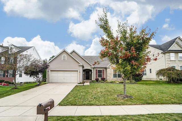 8171 Shady Maple Drive, Canal Winchester, OH 43110 (MLS #220034820) :: The Holden Agency
