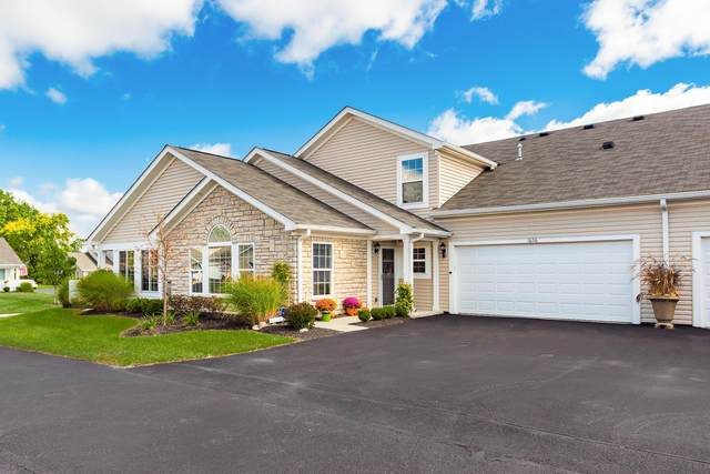 1656 Chestnut Farms Loop, Grove City, OH 43123 (MLS #220034947) :: Signature Real Estate