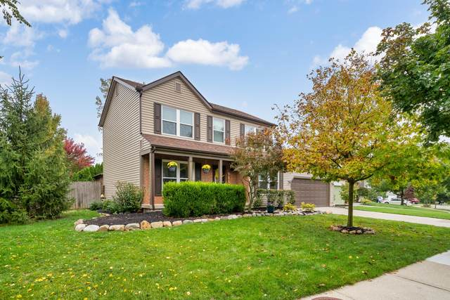 810 Executive Boulevard, Delaware, OH 43015 (MLS #220035148) :: Exp Realty