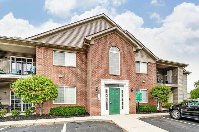 823 Spring Valley Drive, Lewis Center, OH 43035 (MLS #220035247) :: Exp Realty