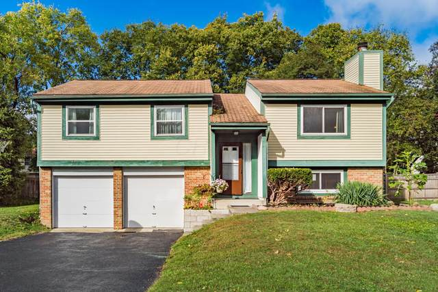 6311 Amston Drive, Dublin, OH 43017 (MLS #220035288) :: Berkshire Hathaway HomeServices Crager Tobin Real Estate