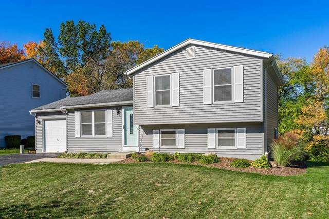 706 Cherryhurst Drive, Columbus, OH 43228 (MLS #220035723) :: Keller Williams Excel