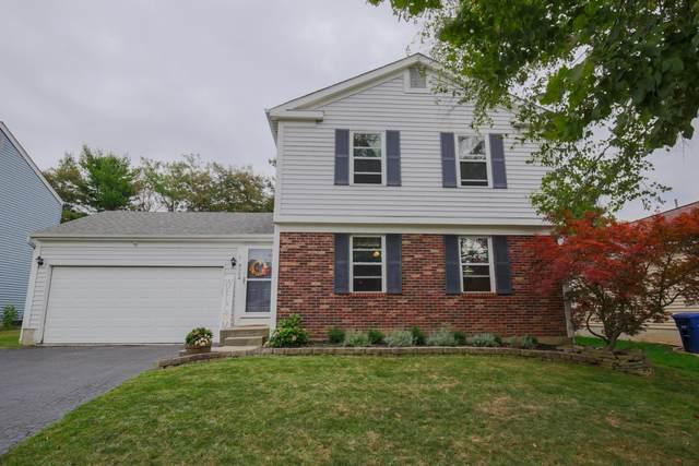 4524 Cliff Ridge Drive, Columbus, OH 43230 (MLS #220035815) :: Signature Real Estate