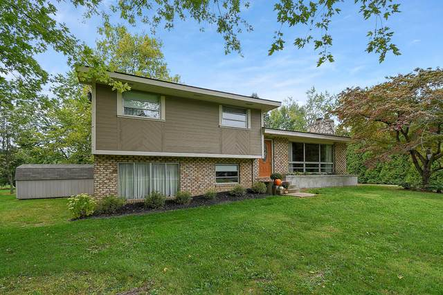 7719 Morse Road, New Albany, OH 43054 (MLS #220036034) :: Keller Williams Excel