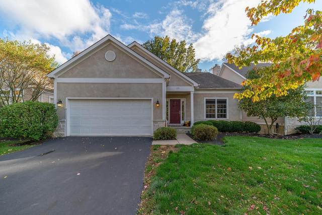 179 Creekside Green Drive, Columbus, OH 43230 (MLS #220036200) :: MORE Ohio