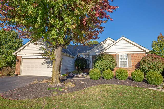 8681 Oak Creek Drive, Lewis Center, OH 43035 (MLS #220036298) :: The Jeff and Neal Team | Nth Degree Realty