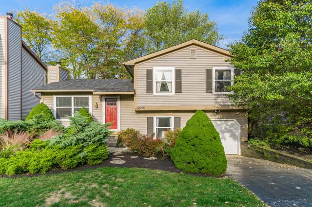 5038 Shannonbrook Drive, Columbus, OH 43221 (MLS #220036430) :: The Willcut Group