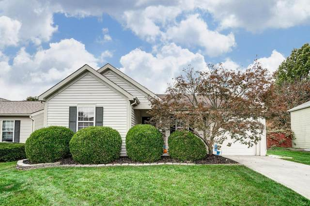 8667 Blanca Court, Powell, OH 43065 (MLS #220036799) :: The Willcut Group