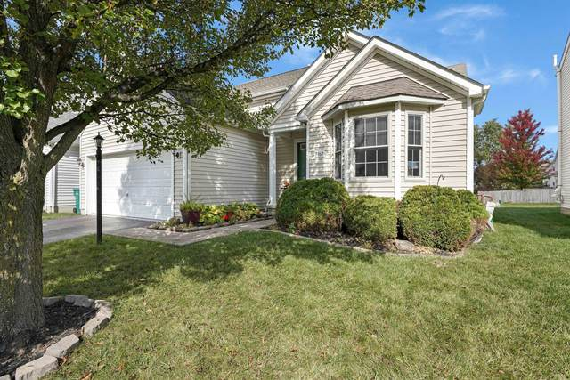 7962 Headwater Drive, Blacklick, OH 43004 (MLS #220036836) :: Susanne Casey & Associates
