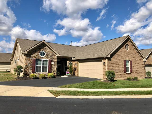 5833 Asherton Grove Drive, Westerville, OH 43081 (MLS #220036849) :: The Willcut Group