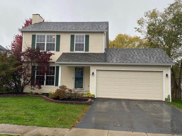 6129 Woodsboro Drive, Columbus, OH 43228 (MLS #220036961) :: Exp Realty