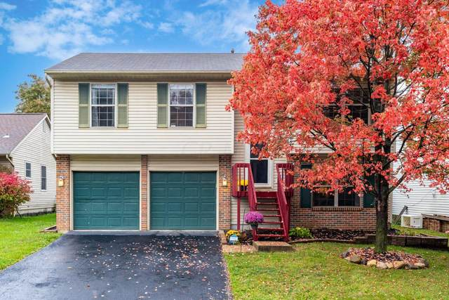 1545 Covina Drive, Columbus, OH 43228 (MLS #220037204) :: RE/MAX ONE