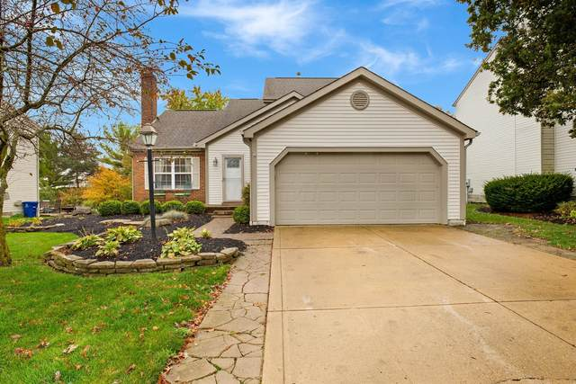787 Wynstone Drive, Lewis Center, OH 43035 (MLS #220037256) :: Core Ohio Realty Advisors