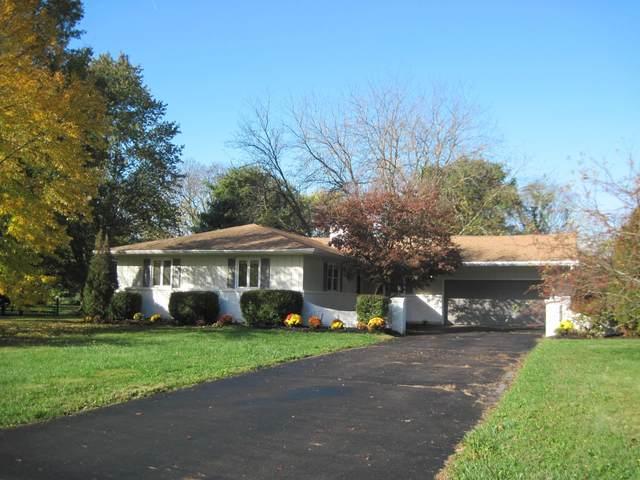 13469 Chessington Court, Pickerington, OH 43147 (MLS #220037599) :: The Holden Agency