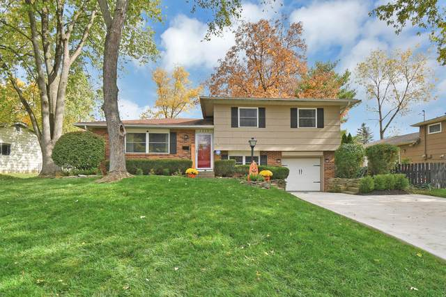 6222 Bader Road, Westerville, OH 43081 (MLS #220037774) :: Core Ohio Realty Advisors