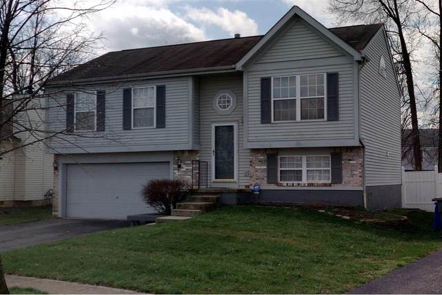 1961 Big Tree Drive, Columbus, OH 43223 (MLS #220038053) :: The Holden Agency