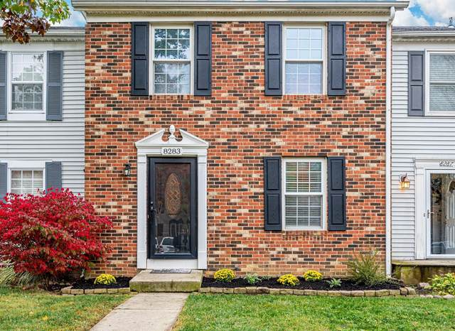 8283 Lariat Court, Powell, OH 43065 (MLS #220038070) :: CARLETON REALTY