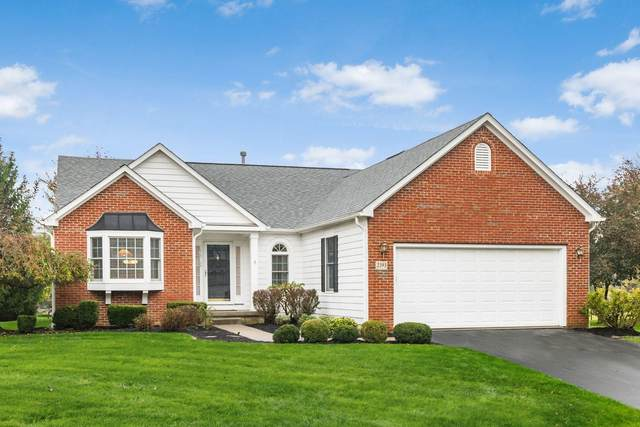 2393 Meadowshire Road, Galena, OH 43021 (MLS #220038273) :: The Jeff and Neal Team | Nth Degree Realty