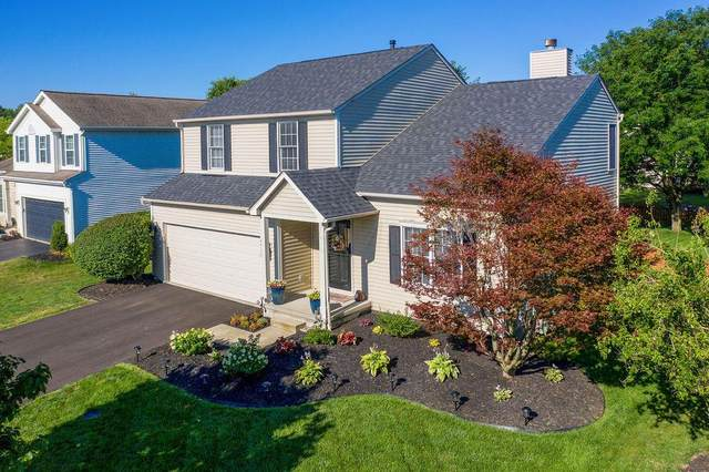 6622 Danbury Drive, Westerville, OH 43082 (MLS #220038415) :: The Willcut Group