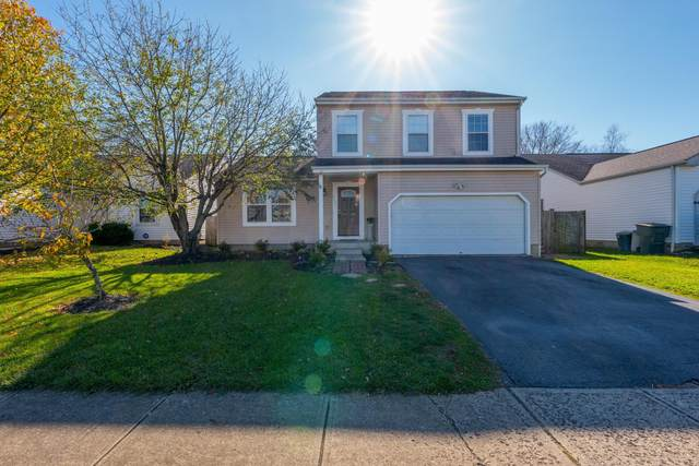 6755 Alex Drive, Canal Winchester, OH 43110 (MLS #220039073) :: Angel Oak Group