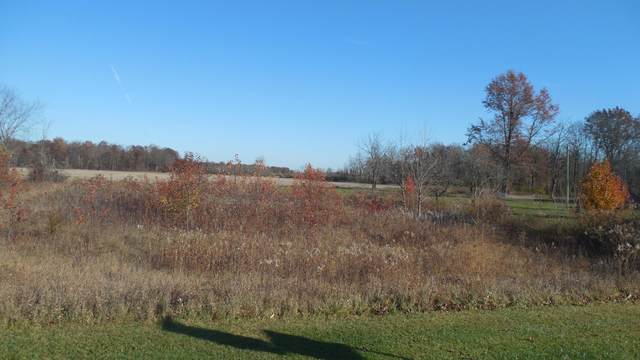 14348 Weaver Road, Marysville, OH 43040 (MLS #220039596) :: Signature Real Estate