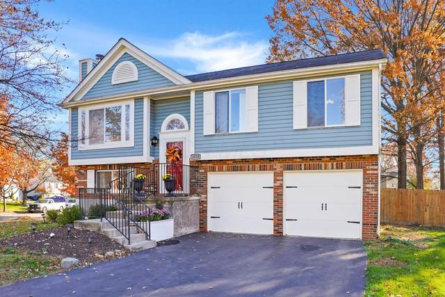 1019 Crosshaven Court, Westerville, OH 43081 (MLS #220039740) :: Angel Oak Group