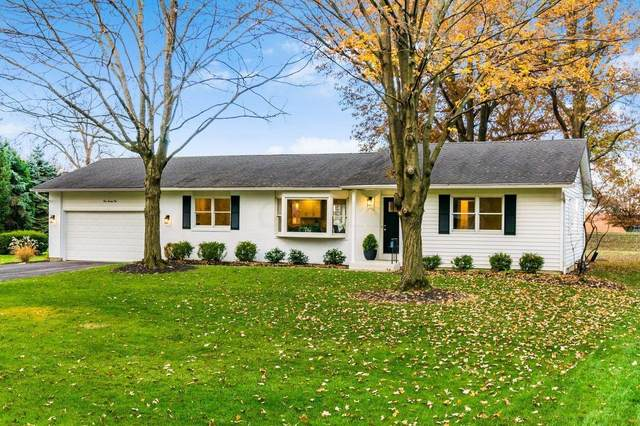 121 Boyd Drive, Worthington, OH 43085 (MLS #220039938) :: Angel Oak Group