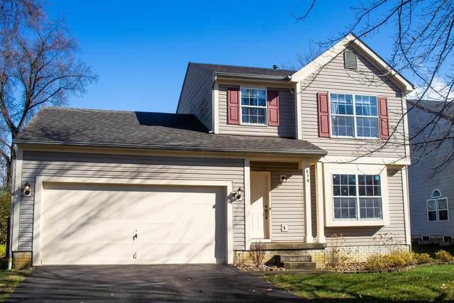 834 Lizzie Lane, Columbus, OH 43213 (MLS #220040528) :: Angel Oak Group