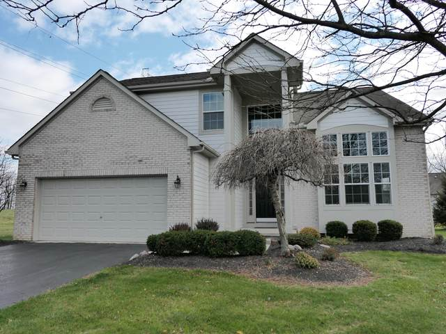 7461 Tall Pine Drive, Lewis Center, OH 43035 (MLS #220040569) :: Angel Oak Group