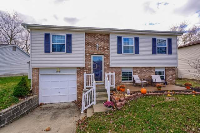 5151 Wolf Run Drive, Columbus, OH 43230 (MLS #220040976) :: RE/MAX Metro Plus