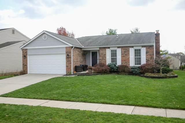 1955 Diamondback Drive, Powell, OH 43065 (MLS #220041253) :: The Jeff and Neal Team | Nth Degree Realty