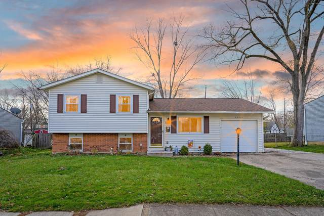 6045 Paris Boulevard N, Westerville, OH 43081 (MLS #220041299) :: ERA Real Solutions Realty